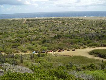 Buggyrijden op Curaçao